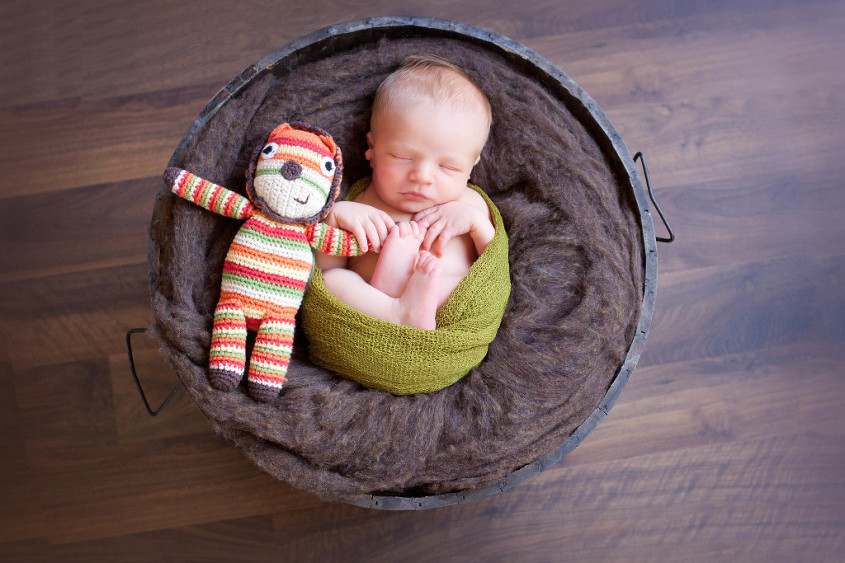 Newborn baby boy curled up in brown wooden round crate with green map and lion toy