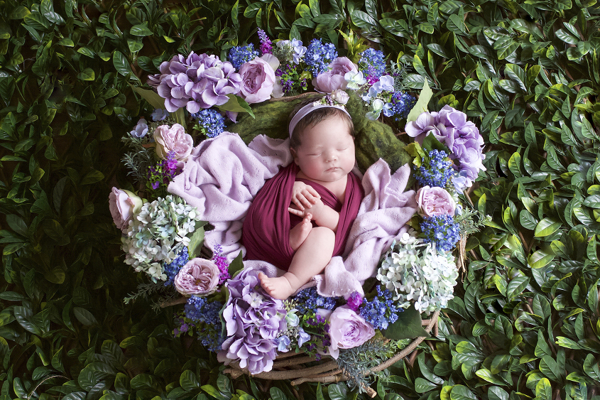 Newborn baby girl wrapped in plum wrap in pink and purple flower nest with purple blanket on green leaves