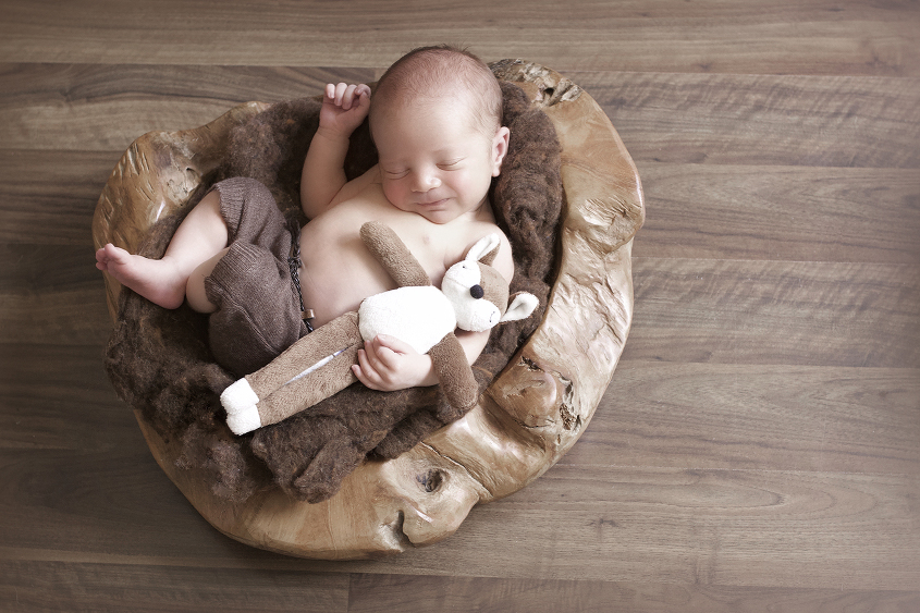 Newborn baby sleeping in wooden log bowl with brown felt wearing brown shorts holding brown toy fox on wooden floor