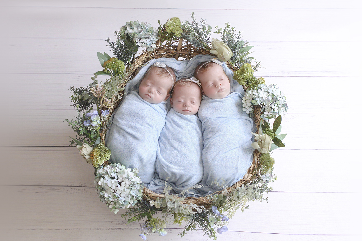 Newborn twin girls wrapped in blue blankets in a blue floral nest on white wooden floor wearing blue flower tiebacks