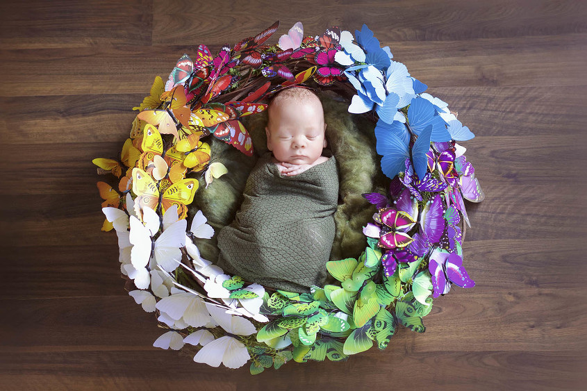 Newborn baby bpy wrapped in olive wrap in nest surrounded by a rainbow butterflies