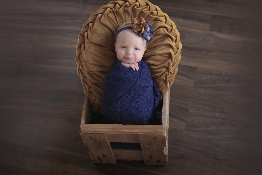 Newborn baby girl sleeping in wooden crate with mustard round cushion wrapped in navy wrap with navy and mustard flower tieback