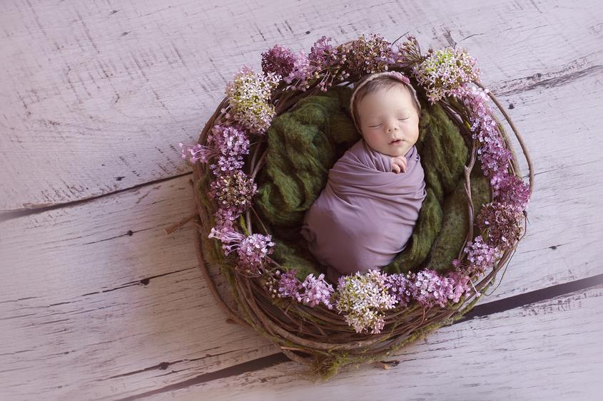 Newborn baby girl sleeping in purple flower nest on white wooden floor wrapped in purple wrap with purple tieback