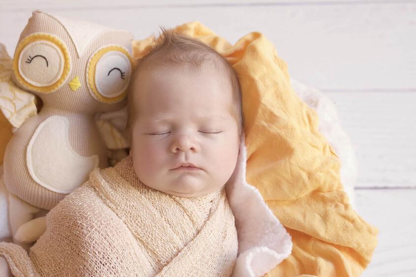 Newborn baby boy sleeping in round cream felt basket with mustard blanket and cream wrap with mustard and cream toy owl on white wooden floor